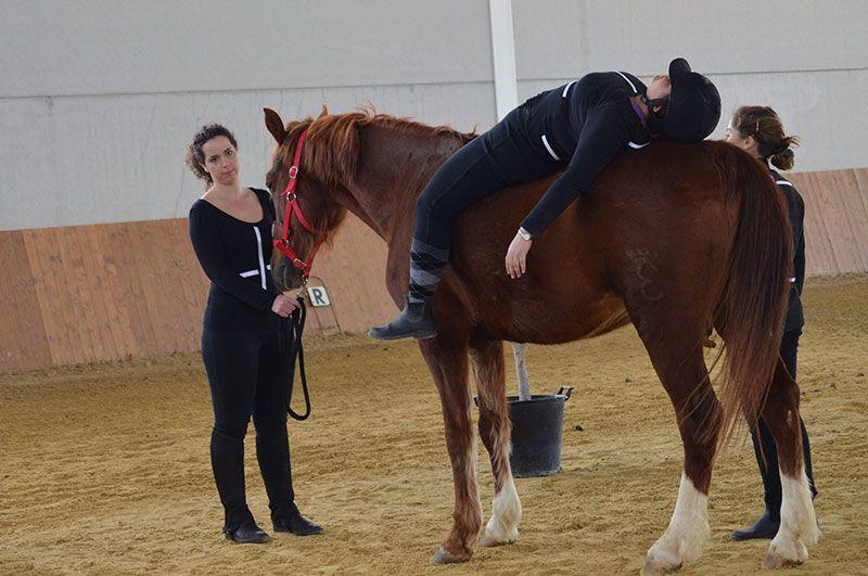 Demostracion terapias asistidas con caballos